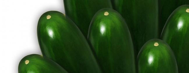 slicer-cucumber